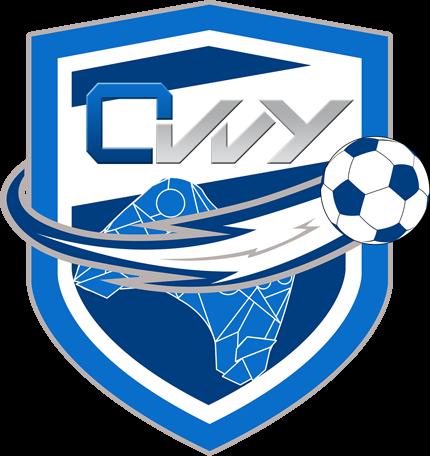 ovvy-logo-custom
